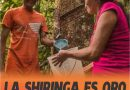 La shiringa es Oro Blanco Amazónico