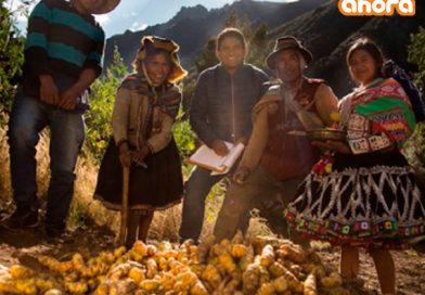 3 de octubre lanzan 2da Reforma Agraria